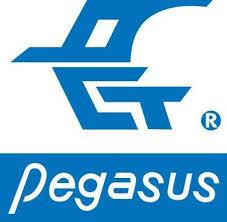 نماینده انحصاری PEGASUS